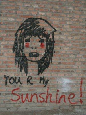 20090611113129-sunshine-1.jpg