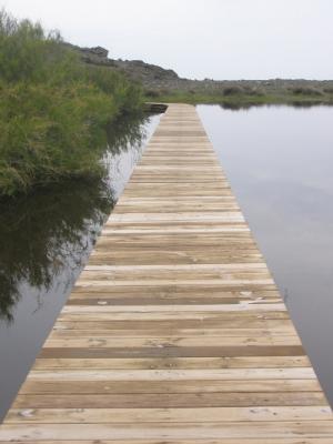 20130506004620-puente.jpg