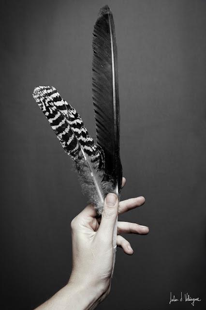 20140215050047-julia-d-velazquez-plumas.jpg