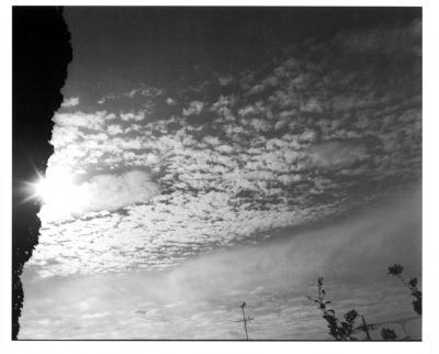 20151104044336-nobuyoshi-araki-23.jpg
