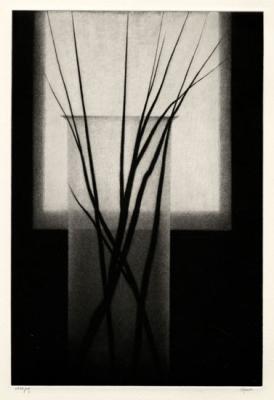 20151225042853-robert-kipniss-vase-wsmall-branches-520.jpg