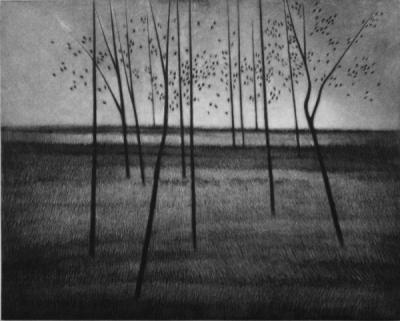 20160106162709-robert-kipniss-trees-composed-520.jpg