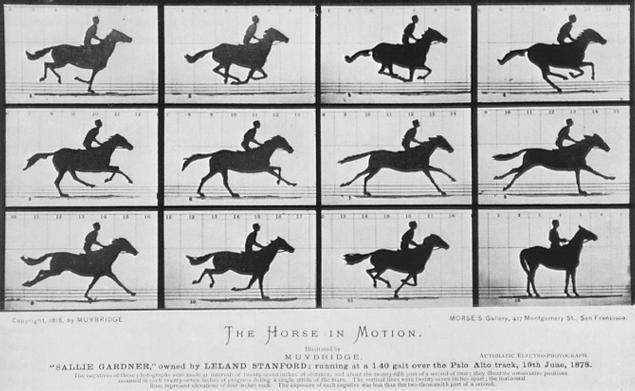20101011125613-muybridge-galloping-horse.jpg