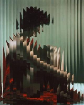 20121224142423-erwin-blumenfeld.jpg